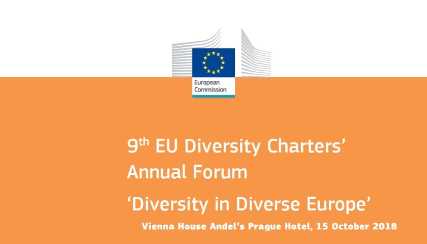 9. výroční setkání evropské Charty diverzity